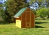 Chicken Cabin (Solid)